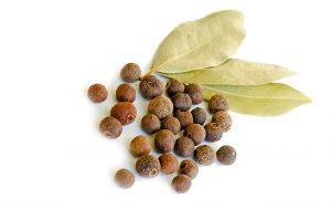 pimento sainisrl spezie aromi