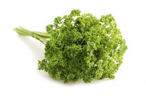 prezzeomolo saini srl spezie aromi